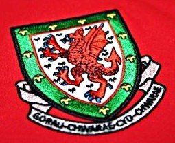 wales national football team tickets